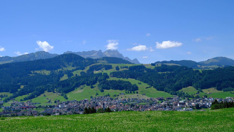 Über Wurzelstock & Stein zur Bergbraugerste