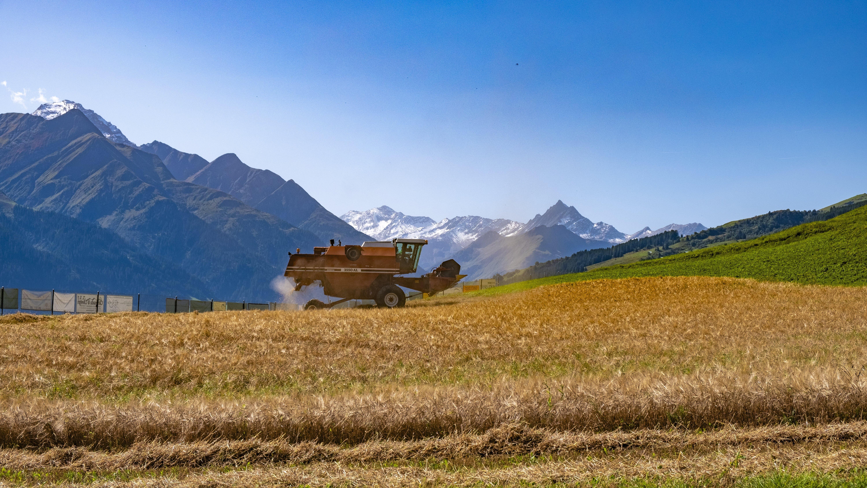 Appenzeller Bier-Drohne bei Bio-Bergbraugerstenernte in Vella geortet