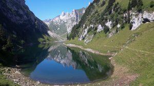 Read more about the article Ein reines Wasser muss durch einen tiefen Stein