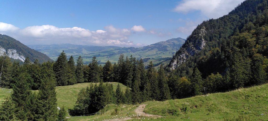 Von der Quelle zum Etiketten-Sujet: Eine Wasserwanderung im Alpstein